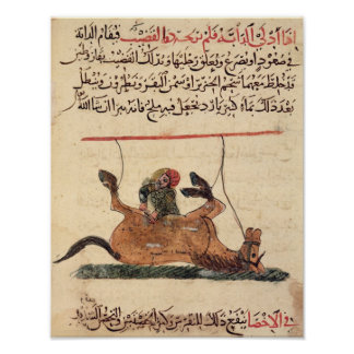 Operación en un caballo, ejemplo poster