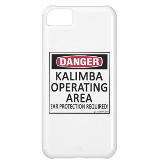 Operating Area Kalimba iPhone 5C Case
