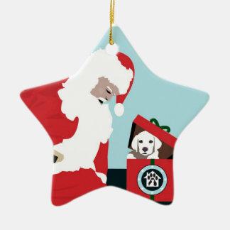 Operation Paws for Homes Dog Rescue - Star Ornamen Ceramic Ornament