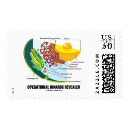 Operational Innards Revealed Endomembrane System Postage