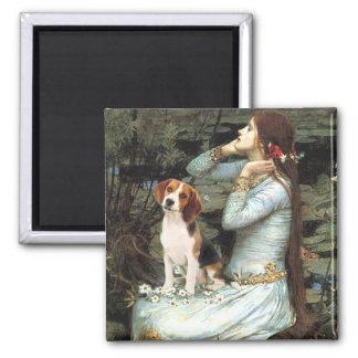Ophelia-Beagle1 Iman