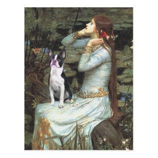 Ophelia &- Boston Terrier Postcard