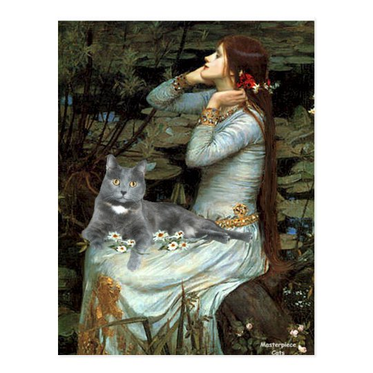 Ophelia - Grey cat Postcard