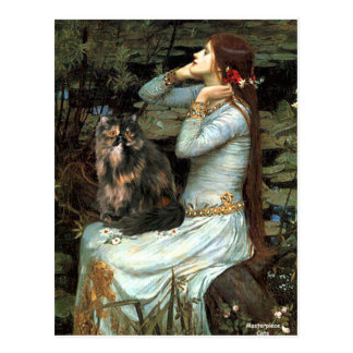 Ophelia - Persian Calico cat Postcard