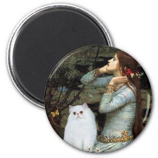 Ophelia - White Persian Kitten Magnet