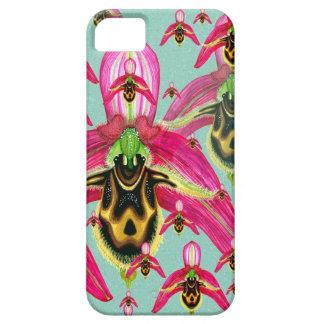 Ophrys cornutula iPhone 5 covers
