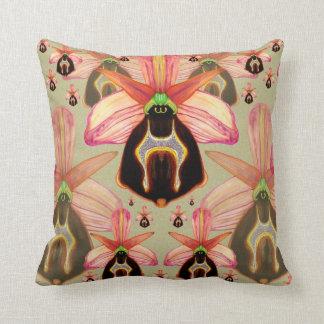 Ophrys lesbis pillows