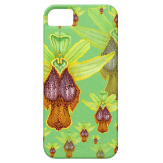 Ophrys parosica iPhone 5 covers