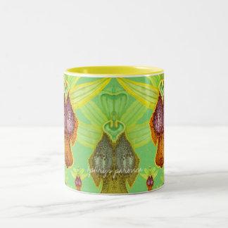 Ophrys parosica mug
