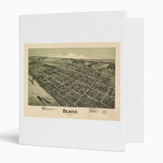 """Opinión aérea el castor Pennsylvania (1900) Carpeta 1"""""""