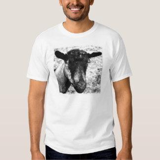 Opinión blanco y negro de la cabeza de la cabra de playeras