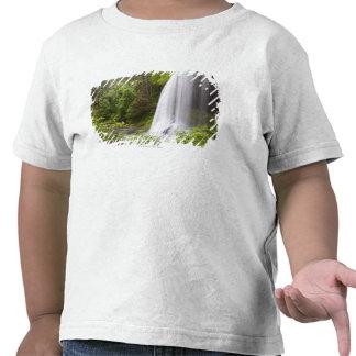 Opinión borrosa de la cascada y del bosque en Oreg Camisetas