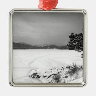Opinión BW del invierno del depósito de Nederland Ornaments Para Arbol De Navidad