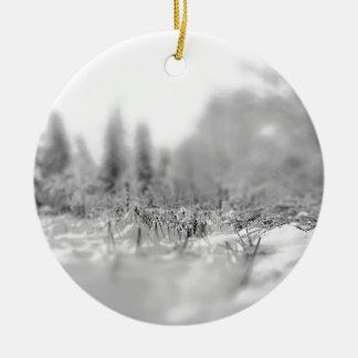 Opinión congelada invierno de la naturaleza ornamento para reyes magos
