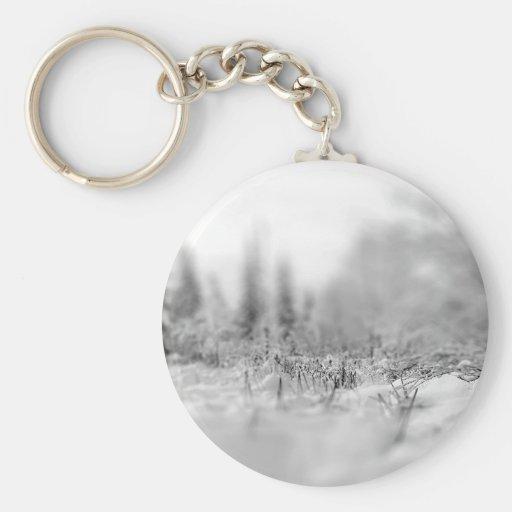 Opinión congelada invierno de la naturaleza llaveros personalizados