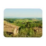 Opinión de alto ángulo de casas con el viñedo en imán de vinilo