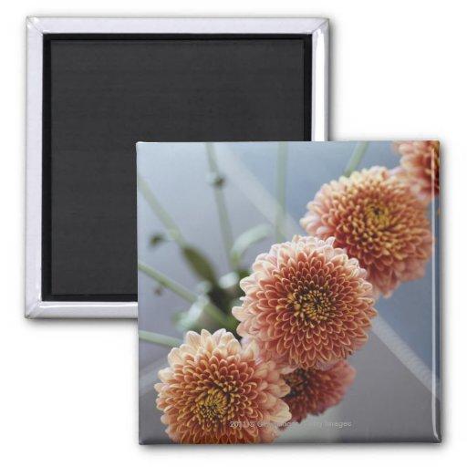 Opinión de alto ángulo de flores en un florero imán para frigorifico