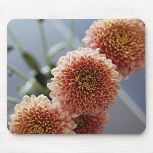 Opinión de alto ángulo de flores en un florero tapete de ratones