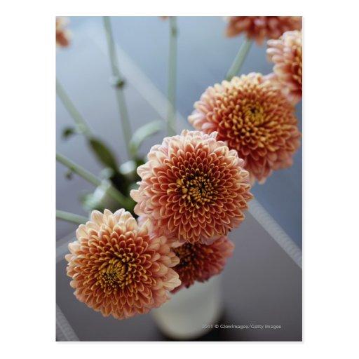 Opinión de alto ángulo de flores en un florero postales
