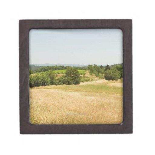 Opinión de alto ángulo de un campo, provincia de caja de joyas de calidad