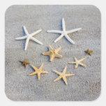 Opinión de alto ángulo una estrella de mar en la calcomanía cuadradas personalizadas