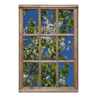Opinión de árbol de florecimiento de una ventana poster