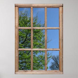 Opinión de árbol frondosa de una ventana posters