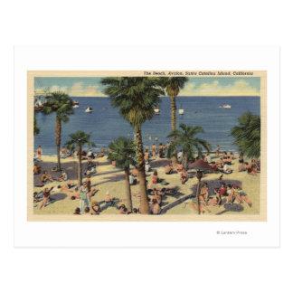 Opinión de Avalon de la playa con los Sunbathers Postales