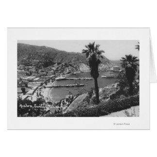 Opinión de Avalon, isla de CA Santa Catalina del p Tarjetas
