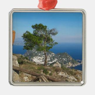 Opinión de Capri de la isla del Monte Solaro Adornos De Navidad