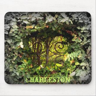 Opinión de Charleston Tapetes De Ratón