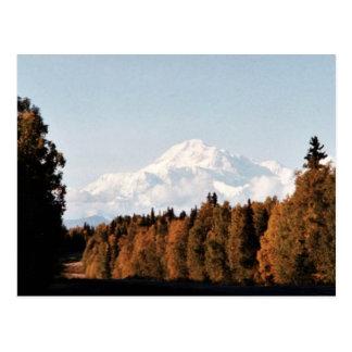 Opinión de la caída de Denali, el monte McKinley Tarjetas Postales