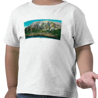 Opinión de la ciudad de Juneau, AlaskaJuneau, AK Camisetas