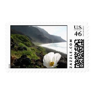 Opinión de la flor de Kalalau Kauai