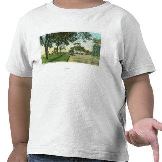Opinión de la isla de los picos del botón de la camisetas