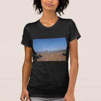 Opinión de la isla del municipio escocés de la camisas