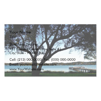 Opinión de la orilla del lago tarjetas de visita