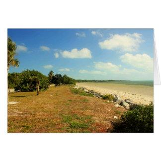 Opinión de la playa en el parque de estado máximo  tarjetón