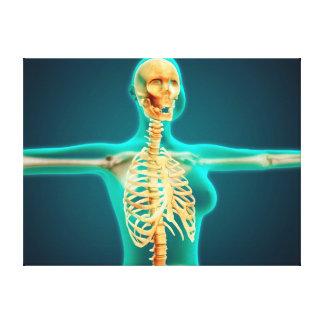 Opinión de la radiografía del cuerpo superior impresión en tela