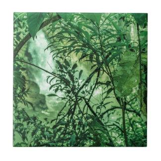 Opinión de la selva en el parque nacional de azulejo cuadrado pequeño