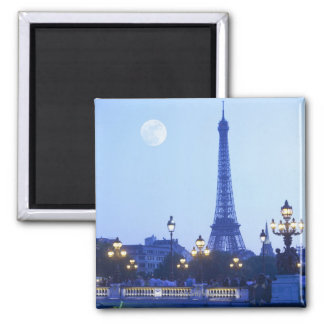 Opinión de la tarde de la torre Eiffel Imán Cuadrado