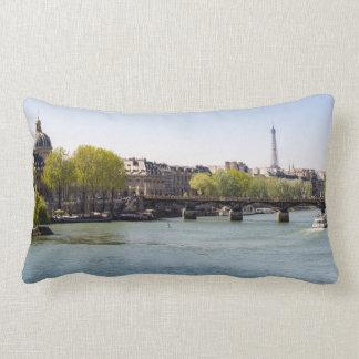 Opinión de la torre Eiffel del Sena del río en Almohadas