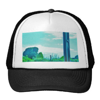 Opinión de la ventana gorras de camionero