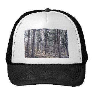 opinión de madera del bosque de la plantación gorro de camionero