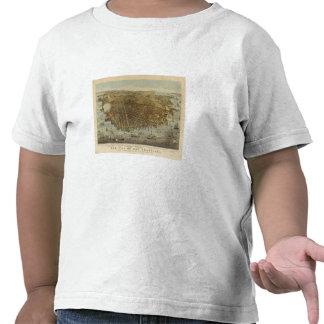 Opinión de ojo de pájaros de San Francisco Camisetas