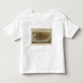 Opinión de ojo de pájaros de San Francisco T Shirts