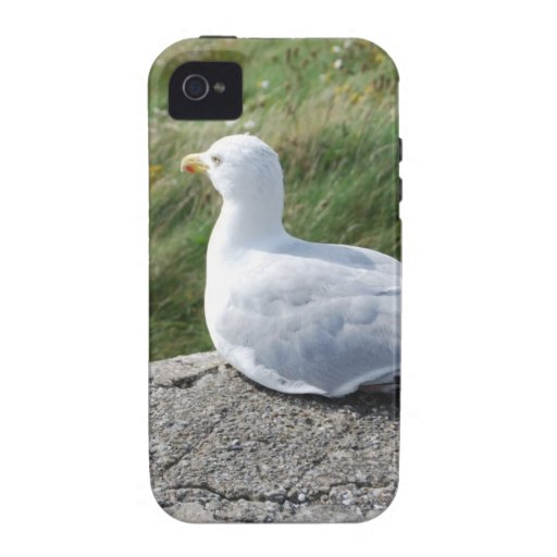 Opinión de ojo de pájaros iPhone 4/4S funda