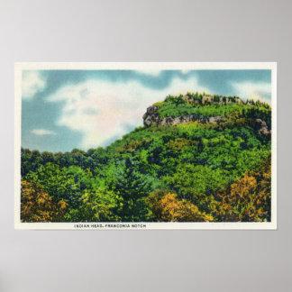 Opinión de parque de estado de la muesca de Franco Posters