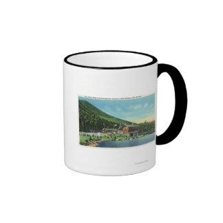 Opinión de Stevens del lago de la casa de peaje Tazas De Café