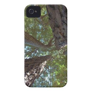 Opinión de tierra de Forrest iPhone 4 Case-Mate Cárcasas